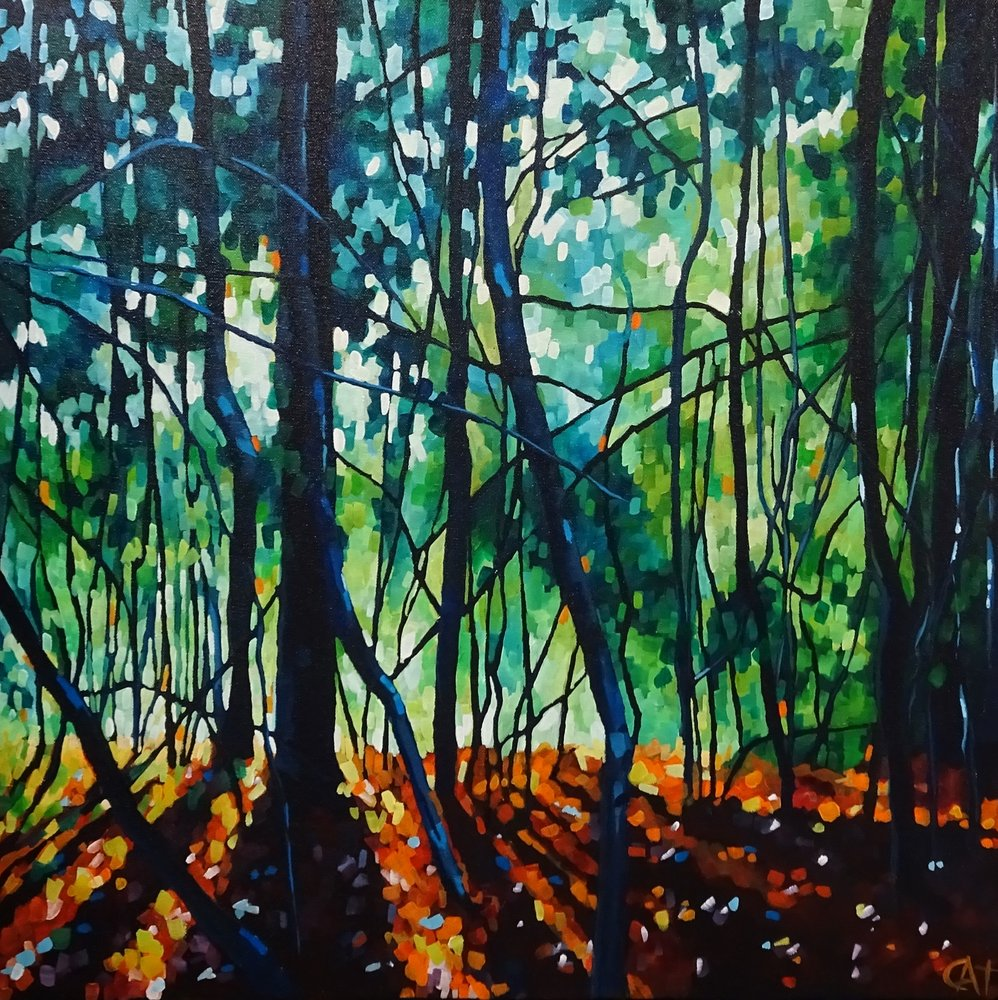 Woodland Light  by Cat Croxford