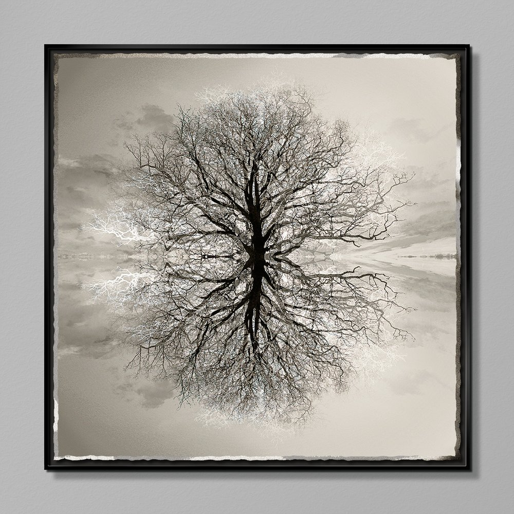 Symmetree Safe Arbor by Mark Welland