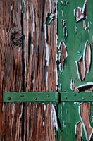 Green Hinge by Tom White